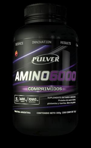 PULVER-Amino6000